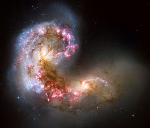 Life Cosmos