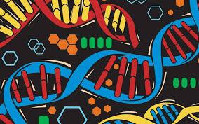 DNA Clues